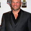 Stock Photo: Randy Couture