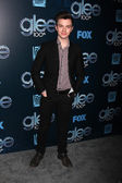 Chris Colfer — Stockfoto