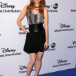 Постер, плакат: Darby Stanchfield