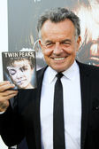 Ray Wise — Foto de Stock