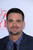 Mark Salling — Stock Photo