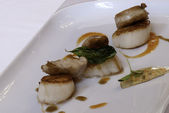 Scallops and sweetbreads — Stock Photo