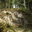 Rocky outcrop in woods — Stock Photo