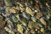 Stream flowing over coloured pepples — Stock Photo