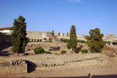 Alcazaba of Merida (Spain) — Stock Photo