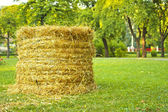 Bale of straw — Foto Stock