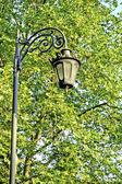 Lantaarn in zomer park — Stockfoto