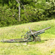 Old army artillery cannon — Stock Photo