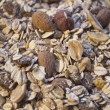 Closeup background of muesli — Stock Photo