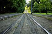 Ligne de tram droites — Photo