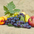 Fresh autumn fruit - Stock Photo