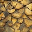 A log of wood - Stock Photo