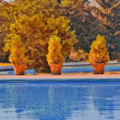Royalty-Free Stock Photo: Outdoor swimming pool