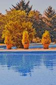Outdoor swimming pool — Stock Photo
