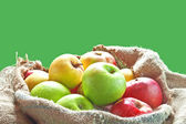 Sacks of apples — Stock Photo