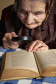 Eldery woman reading Bible — Stock Photo