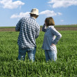 Stock Photo: Two farmers in wheat field.