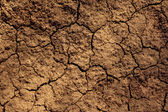 Dry soil texture — 图库照片