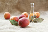 Apricot brandy or schnapps and tasty apricot fruit. — Stock Photo