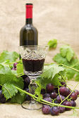 Red wine in wine glass with sweet grapes. — Stock Photo