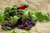 Tasty sweet grapes with red wine in bottle. — Stock Photo