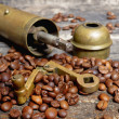 Coffee beans with coffee grinder — Photo