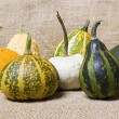 Stock Photo: Pumpkins on a table cloth.