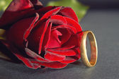 Red rose and wedding ring — Stock Photo