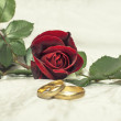 Red rose and wedding rings. — Stock Photo #36196131