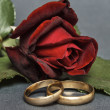 Red rose and wedding rings. — Stockfoto