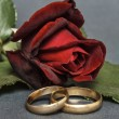 Stock Photo: Red rose and wedding rings.