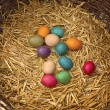 Easter eggs in nest — Stock Photo