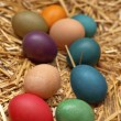 Easter eggs in nest — Stock Photo #39631307