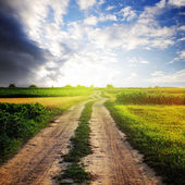 Rural road in the field and sunny sky — Stock Photo
