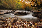 Autumn creek in Transylvania — Stock Photo