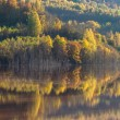 Reflections on a lake with autumnal forest — Foto Stock