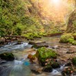 River deep in mountain and forest — Stock Photo