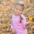 Little cute girl playing in autumn park with colorful leafs — Stock Photo #34541207