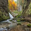 Autumnal creek with beautiful mossy stones and blue water in Transylvania — Stock Photo #34985571