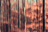 Artistic Abstract forest composition — Stock Photo