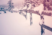Snow covered fence in the snowfall - Transylvania — Stock Photo