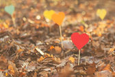 Paper hearts on sticks used as decorations — Stock Photo