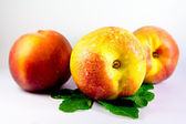 Peach, nectarine — Stock Photo