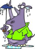 Douche de rhino de dessin animé — Vecteur