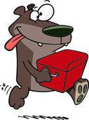 Cartoon Bear with Watercooler — Stock Vector