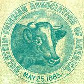 Bir inek ile amblemi — Stok fotoğraf