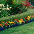 Stock Photo: Colorful Garden