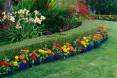 Colorful Garden — Stock Photo