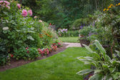 Lush Backyard Garden — Stock Photo