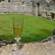 Champagne at the ruins - Foto Stock